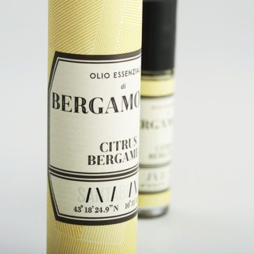 Bergamot orange essential oil-2