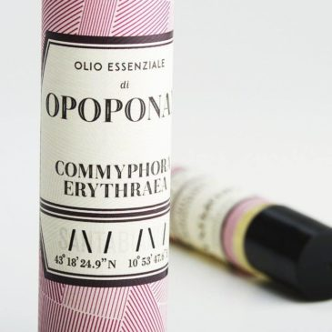 Opoponax essential oil