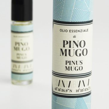 Mugo Pine essential oil